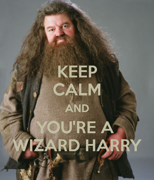 keep-calm-and-you-re-a-wizard-harry-2